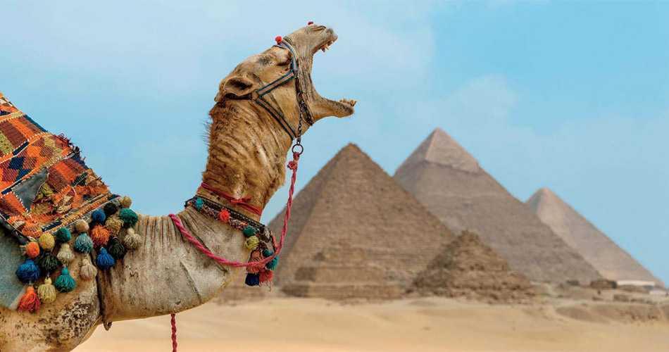 Die besten Sehenswürdigkeiten in Kairo