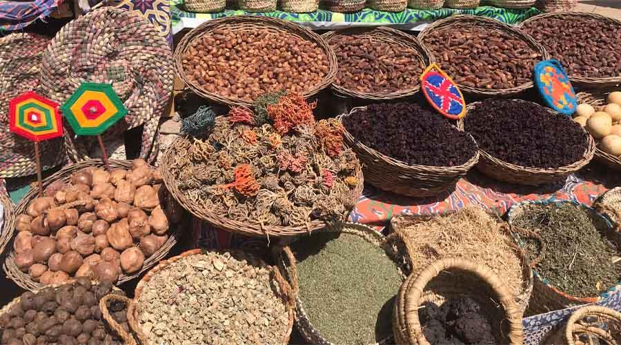 7 Nächte Luxus Nilkreuzfahrt und 7 Nächte Mövenpick El Gouna