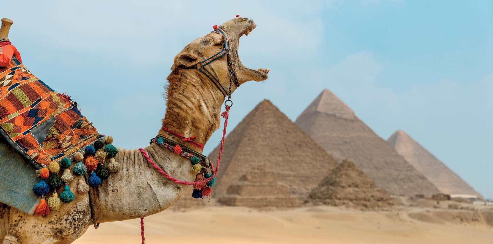 9 Tage Kairo, Nilkreuzfahrt und Badeurlaub